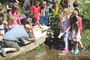 Trout release at the Morris Creek Watershed