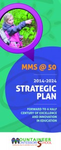 MMS Strategic Plan_FINAL_nobleeds
